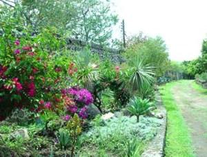 jardinerabarda1